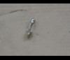 Žárovka sufitová 12V 5W