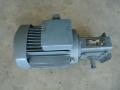 Elektromotor s převodovkou 0,12kw/13ot